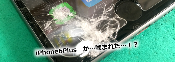 iPhone6Plus画面われ